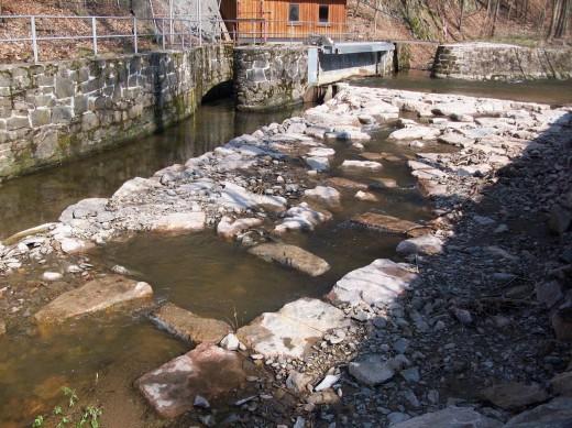 Fachexkursion an Flüsse und Bäche im Landkreis