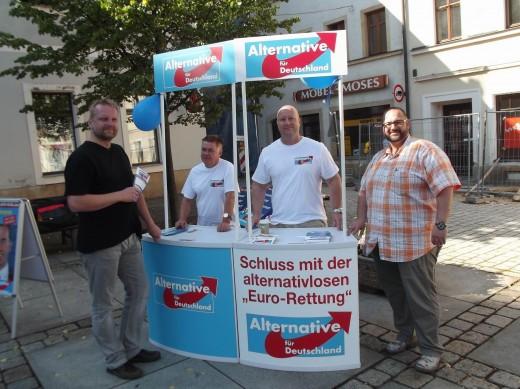 Wahlkampf AfD am 06.09.2013 auf dem Markt in Dipps